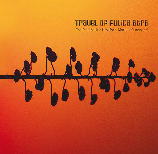 Esa Pietilä Trio: Travel of Fulica atra